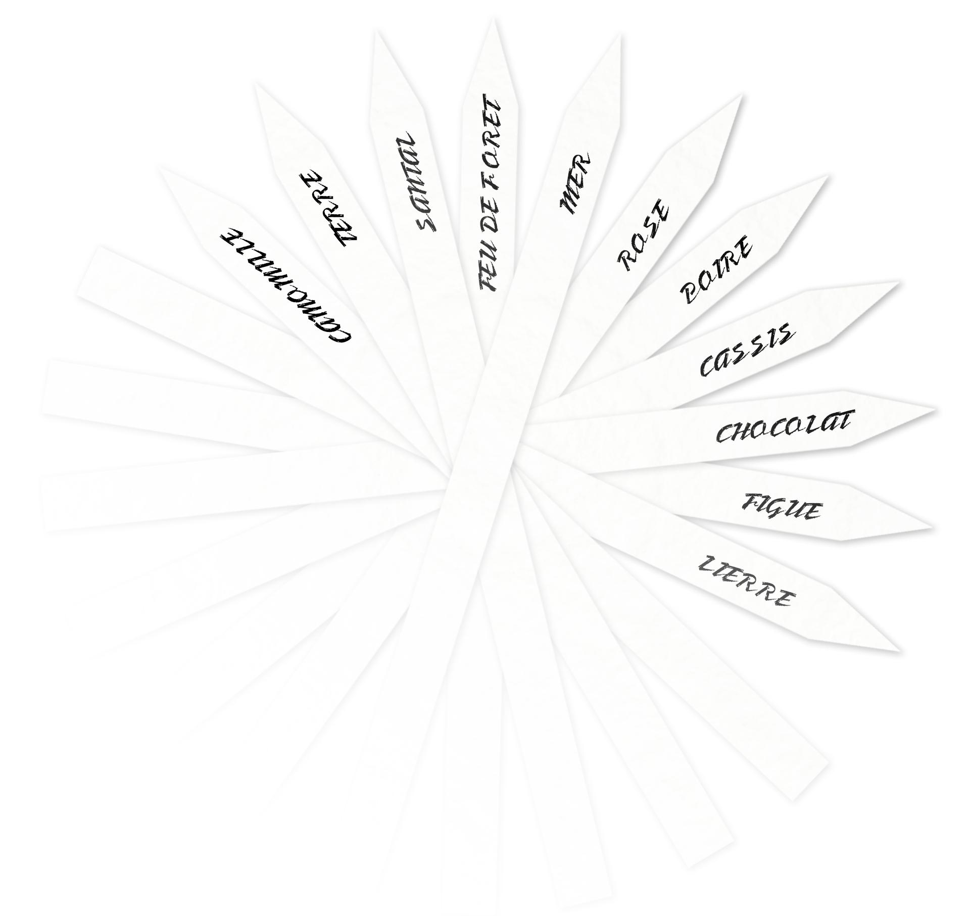 montage_parfum_tests